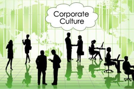 văn hóa tổ chức là gì