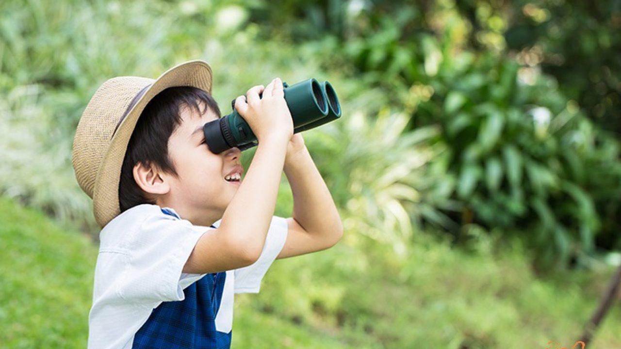 Các phương pháp tăng khả năng quan sát cho trẻ được các mẹ Nhật áp dụng